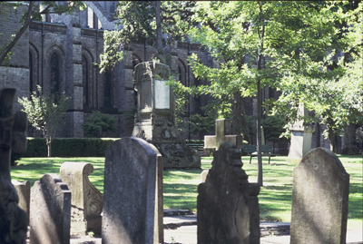 colour photo of several headstones